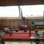 Kup i Pionirska liga Srbije u muškoj sportskoj gimnastici, maj 2010 Kostolac (22)