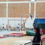 Kup i Pionirska liga Srbije u muškoj sportskoj gimnastici, maj 2010 Kostolac (23)
